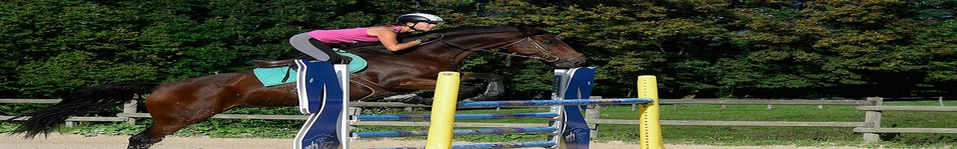 ExtraOffre Sport Banner Equitation Category